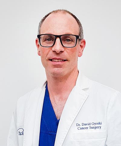 Mr David Gyorki